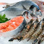 freezer-spiral-tunnel-frozen-seafoods